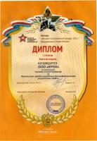 Диплом первой степени и золотая медаль за импульсное зарядно-разрядное десульфатирующее устройство Зевс